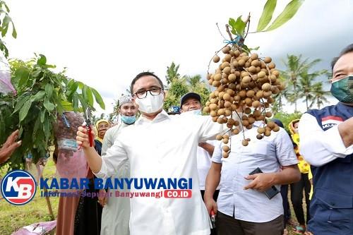 Tingkatkan Ketahanan Pangan, Anas Dorong Warga Manfaatkan Pekarangan dan Lahan Kosong