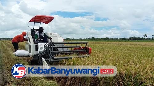 Dispertapa Sebut Program Agrosolution Bisa Dongkrak Produksi Pertanian